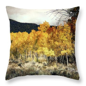 Autumn Hike Throw Pillow