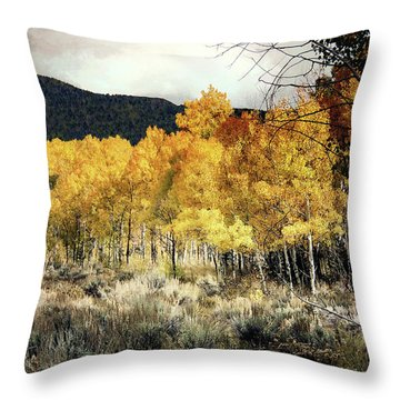 Autumn Hike Throw Pillow by Jim Hill