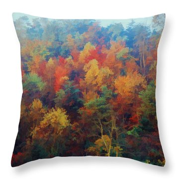 Autumn Hill Aglow Throw Pillow by Diane Alexander