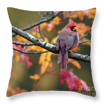 Autumn Hues Throw Pillow