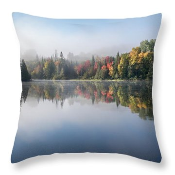 Throw Pillow featuring the photograph Autumn Impression by Jola Martysz