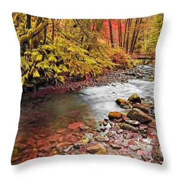Autumn Sunrise In An Oregon Rain Forest  Throw Pillow