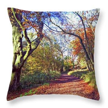 Autumn In Ashridge Throw Pillow by Anne Kotan