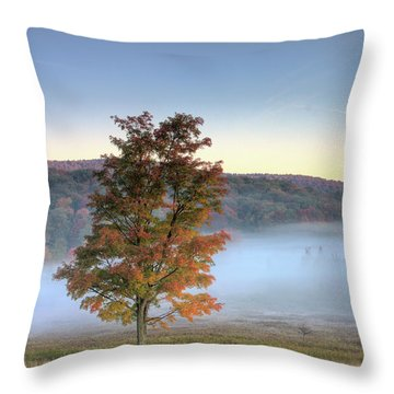 Autumn In Canaan Valley Wv  Throw Pillow