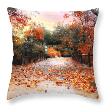 Autumn In Discovery Lake Throw Pillow