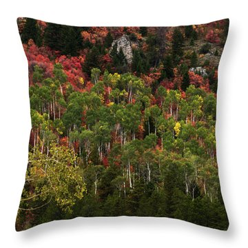 Autumn In Idaho Throw Pillow