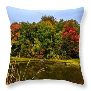 Autumn In Mabou Throw Pillow