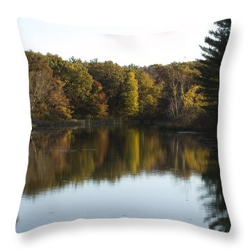 Autumn In Mears Michigan Throw Pillow