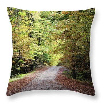 Autumn In Michigan Throw Pillow