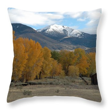 Autumn In Montana's Madison Valley Throw Pillow by Bruce Gourley