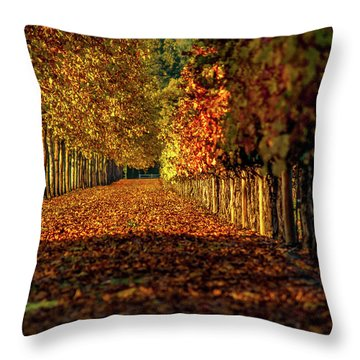 Throw Pillow featuring the pyrography Autumn In Napa Valley by Bill Gallagher