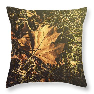 Throw Pillow featuring the photograph Autumn In Narrandera by Jorgo Photography - Wall Art Gallery