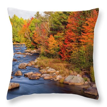 Autumn In New Hampshire Throw Pillow by Betty Denise