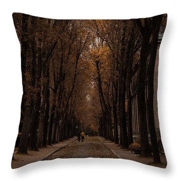 Autumn In Paris 1 Throw Pillow