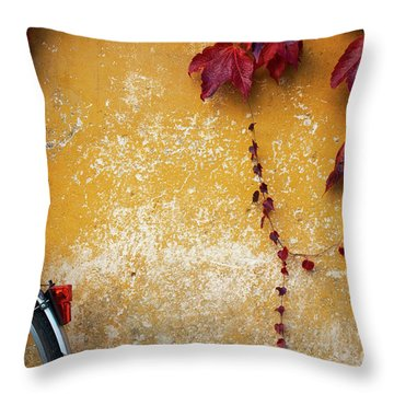 Throw Pillow featuring the photograph Autumn In Red by Yuri Santin