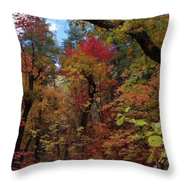 Autumn In Sedona Throw Pillow