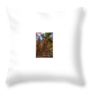 Autumn In Sedona Throw Pillow