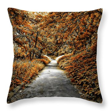 Autumn In Stamford Throw Pillow