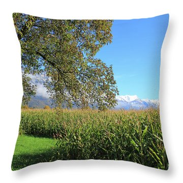 Autumn In Swiss Mountain Landscape Throw Pillow