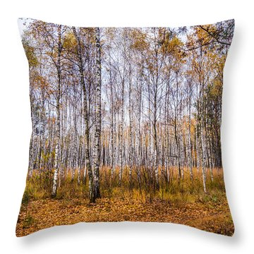 Autumn In The Birch Grove Throw Pillow