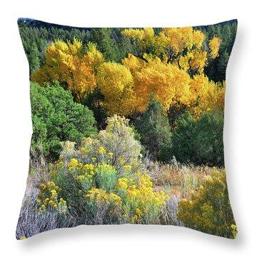 Autumn In The Canyon Throw Pillow