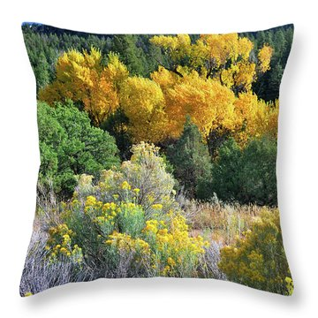 Autumn In The Canyon Throw Pillow