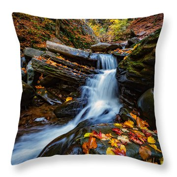 Autumn In The Catskills Throw Pillow by Rick Berk