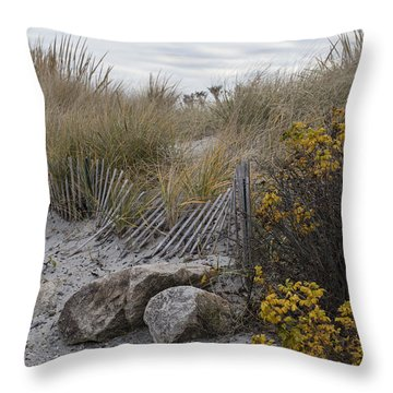 Throw Pillow featuring the photograph Autumn In The Dunes by Andrew Pacheco