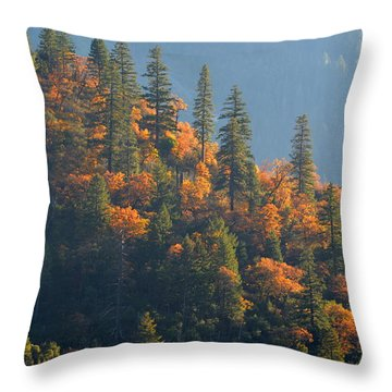 Autumn In The Feather River Canyon Throw Pillow by AJ Schibig