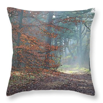 Autumn In The Forest, Painting Like Photograph Throw Pillow