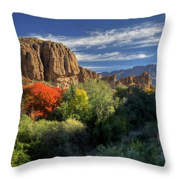Autumn In The Garden Throw Pillow