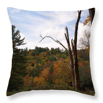 Autumn In The Hills Throw Pillow