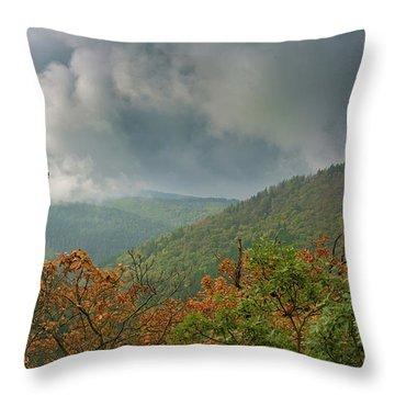 Autumn In The Ilsetal, Harz Throw Pillow