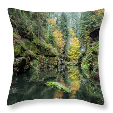 Autumn In The Kamnitz Gorge Throw Pillow