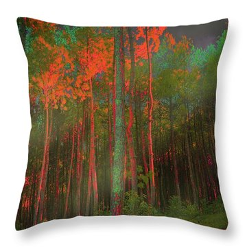 Autumn In The Magic Forest Throw Pillow by Mimulux patricia no No