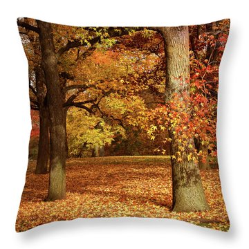 Autumn In The Orchard Throw Pillow