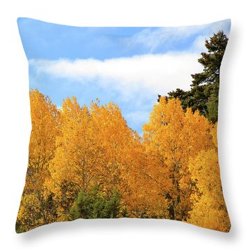 Autumn In The Owyhee Mountains Throw Pillow