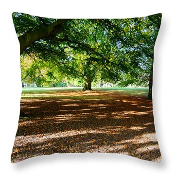 Throw Pillow featuring the photograph Autumn In The Park by Colin Rayner