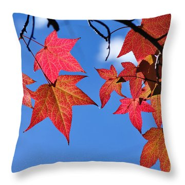Autumn In The Sky Throw Pillow by Kaye Menner
