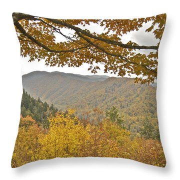 Autumn In The Smokies Throw Pillow by Michael Peychich