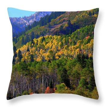 Autumn In Utah Throw Pillow