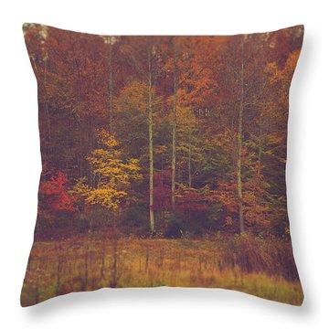 Autumn In West Virginia Throw Pillow