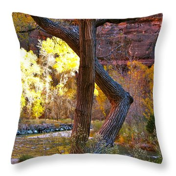 Autumn In Zion Throw Pillow