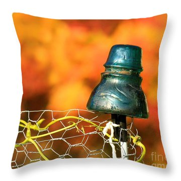 Autumn Insulator Throw Pillow by Debbie Stahre