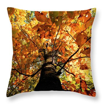 Autumn Is Glorious Throw Pillow