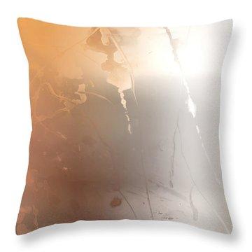 Autumn Iv Throw Pillow