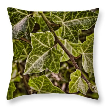Autumn Ivy Throw Pillow by Greg Jackson
