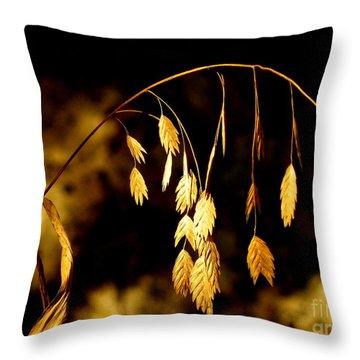 Autumn Jewelery Throw Pillow by Joe Jake Pratt