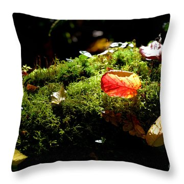 Autumn Jewels For A Mossy Log Throw Pillow