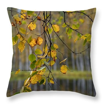 Autumn  Throw Pillow by Jouko Lehto